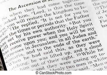 actes, 1:8