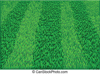 playing field. grass soccer field in 10 EPS