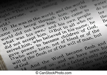 John 1:12 - Bible detail of John 1:12 , a popular New...