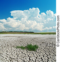 drought earth with green grass under clouds