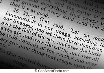 Genesis 1:26 - a popular verse in the Bibles Old Testament...