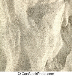 Sandy beach background Detailed sand texture