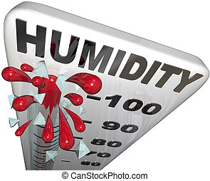 Humidity Level Rate Rising 100 Percent Thermometer - The...