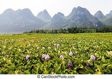 Li river landscape in South China