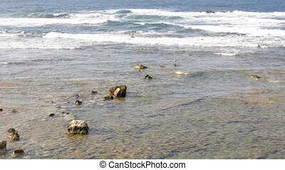 shallow water with rocks