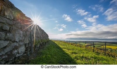 Sun Rising On The Wall