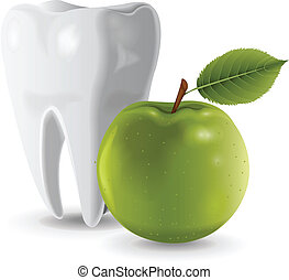 Tooth and Apple vector