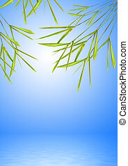 Bamboo Leaf Grass over Water - Abstract of bamboo leaf grass...