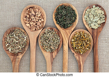 Medicinal Herbs - Herb selection used in alternative...