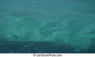 caribbean water shot from from a moving speedboat