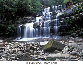 Liffey Falls is collectively a series of four cascades and...
