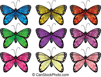 Butterflies in different colors