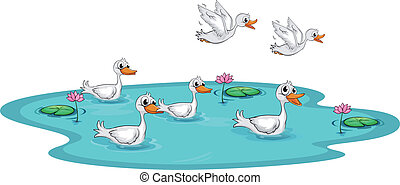 A group of ducks at the pond - Illustration of a group of...