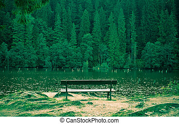 No one - Lonely bench facing the lake