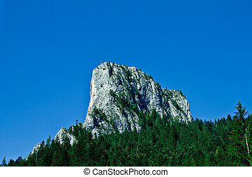 Mountain peak in the Carpathian mountains