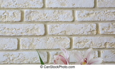 Orchid Cymbidium on the background of a decorative brick...