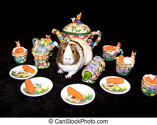 Guinea Pig Tea Party