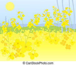 punjab mustard - an illustration of a beautiful bright...