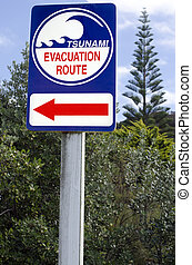 Tsunami evacuation route sign in a coastal area