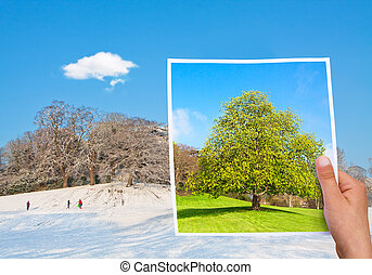 memorable picture summer vs winter - time passing concept...