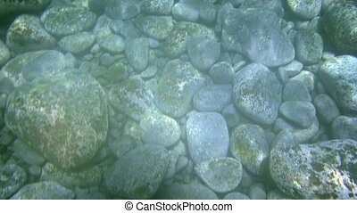 swimming over stones under water, stones are about 30cm long