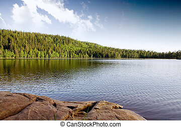 Quiet Lake - A quiet lake in a mountain forest landscape