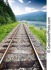 Railraod Tracks - Railroad tracks in nature