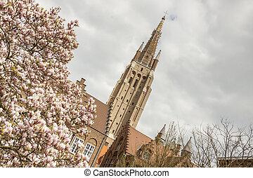 Spring time - Our Lady Church, Brugge, Belgium. - Spring...
