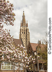 Spring time - Our Lady Church, Brugge, Belgium - Spring time...