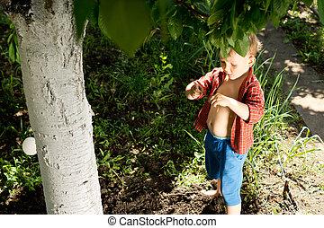 Cute little boy in the garden
