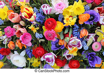 Spring flowers in bright colors - Colorful mixed bouquet...