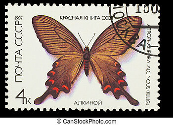 "USSR - CIRCA 1987: A stamp printed in USSR, shows Butterfly Atrophaneura Alcinous , from series ""Red Book USSR"", circa 1987"