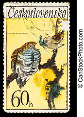 CZECHOSLOVAKIA - CIRCA 1972: A Stamp printed in...