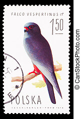POLAND - CIRCA 1974: A stamp printed in POLAND, shows birds...