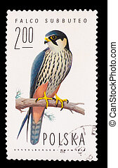 POLAND - CIRCA 1974: A stamp printed in POLAND, shows hobby...