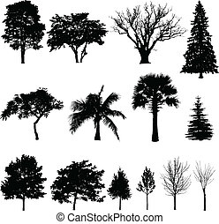 Trees silhouettes - Collection of different trees...