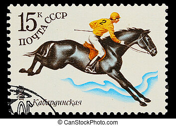 USSR - CIRCA 1982: A stamp printed in USSR, polo equestrian...
