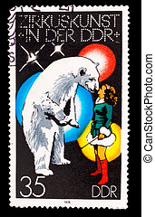 GERMANY - CIRCA 1978: A stamp printed in GERMANY, polar bear...