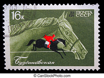 USSR - CIRCA 1968: A stamp printed in USSR, horseback riding, equestrian sport, Budenny horse, circa 1968
