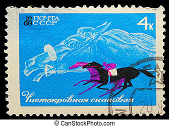USSR - CIRCA 1968: A stamp printed in USSR, horseback riding, equestrian sport, Thoroughbred racehorse, circa 1968