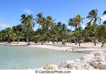 Beach - Guadeloupe FWI