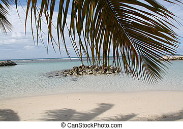 Beach - Guadeloupe
