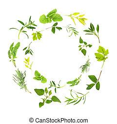 Herb Leaf Garlands - Herb leaf circles of lemon balm, golden...