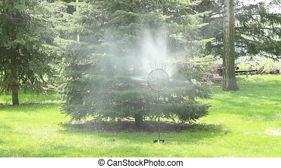 water spinner - spinning lawn sprinkler irrigating a rural...