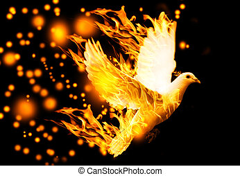 flying dove on fire, on black background