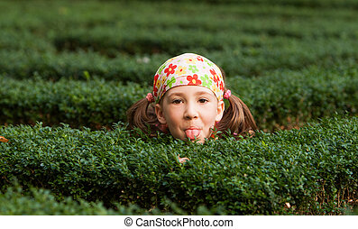 girl playing hide and seek - little girl hiding between...