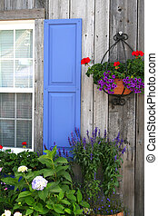Barnboard Wall With Summer Flowers - An artistic corner of a...