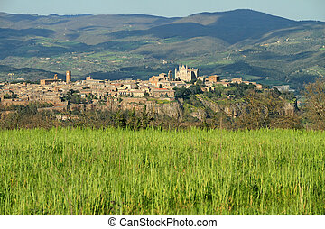 panorama of Orvieto town - fantastic view of panorama of...