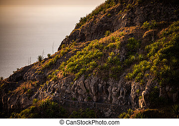 slope - steep cliff line with wild green plants
