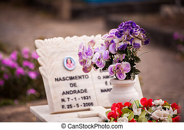 purple flowers in a small white vase standing on a marble...